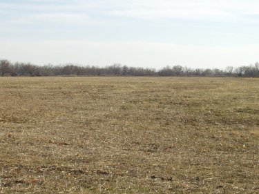 Over 11 Acres in Washington School District; Easy Access to I-35.
